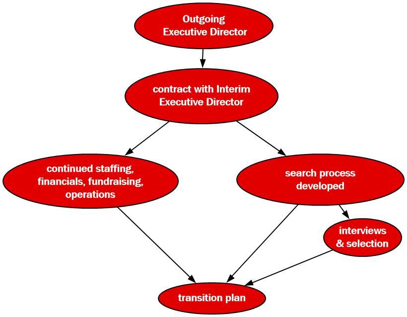 Interim Executive Director process